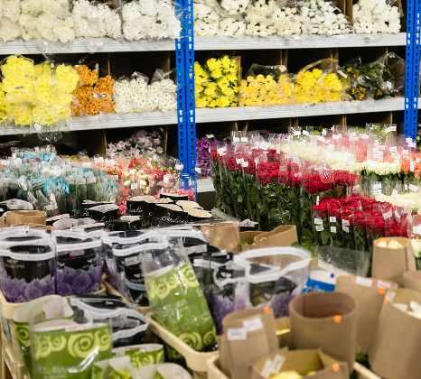 Хочу открыть цветочный магазин